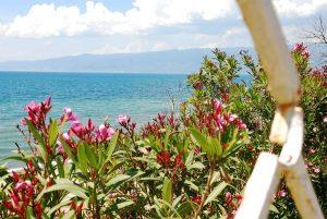 Weite, Meer und bunte Blumen: So geht Urlaub in der Türkei.