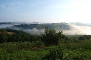 Morgenstimmung in der Toskana in der Nähe der Fattoria Pieve a Salti.