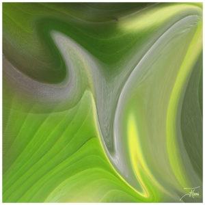 """""""Green 3"""" - Bild von Frauke Hohberger"""