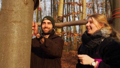 Die Seminarteilnehmer bauen mit wenigen Seilen einen Unterstand im Wald.