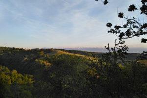 Aussicht auf die Weinberge des Piemonts