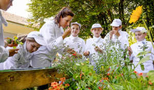 Vamos und Europa Miniköche: Kinder und Koch riechen an den Gartenkräutern
